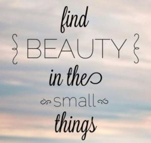 small things 1